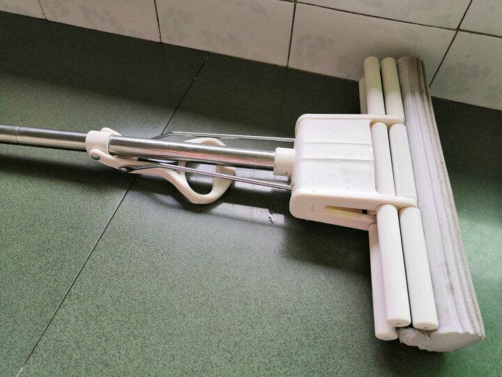 拓朴(TOPOTO)大卫滚轮式大号胶棉拖把海绵吸水地拖家用拖布免手洗墩布M9plus  1杆2头 晒单图