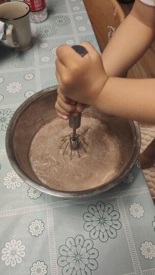展艺冰淇淋粉  手工自制家用软硬雪糕粉 冰棒圣代冰棍原料甜筒材料 巧克力味 100g 晒单图
