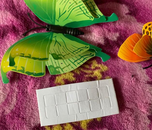 喜艾林 3D立体蝴蝶墙贴画家装创意冰箱贴墙壁贴纸铁艺装饰品窗帘墙贴纸12只双层 12只磁铁款款式随机 晒单图