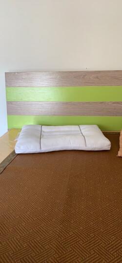 艾薇 枕芯家纺 决明子枕头枕芯单人成人颈椎睡眠枕磁疗枕一个 45*70cm 晒单图