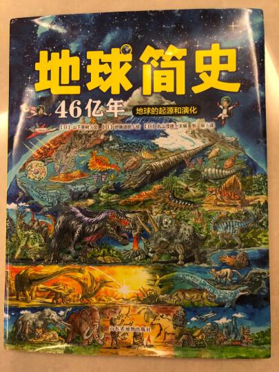 北斗童书·小小达尔文自然探秘系列(套装共4册),北斗儿童图书 晒单图