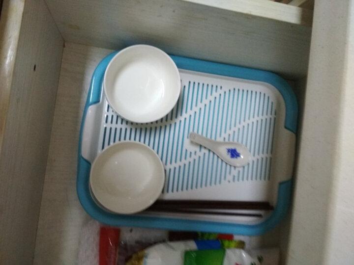 茶花 茶盘托盘塑料长方形茶具茶杯托1035 随机颜色 1个装 晒单图