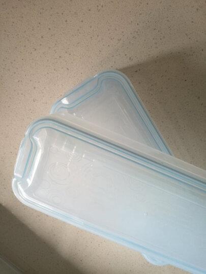 HAIXIN 冰箱收纳保鲜盒 塑料长方形微波食品面条鱼储物盒 透明蓝 1层+1盖 晒单图