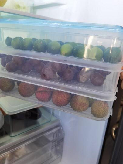 HAIXIN海兴冰箱保鲜盒塑料冷冻储物盒长方形鸡蛋水果食物收纳盒3层1盖 2组装 晒单图