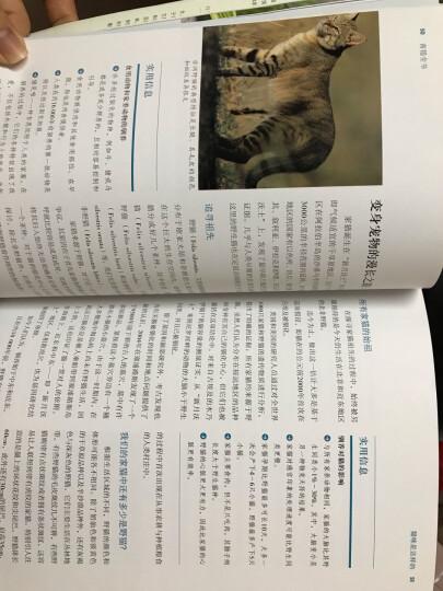育猫全书 晒单图