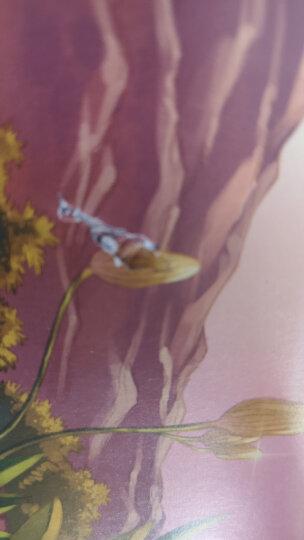 法布尔昆虫记 全套10册 少儿彩绘美图版 3-12岁科普读物 儿童百科全书 小学生课外阅读 晒单图