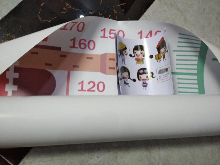 【3件7折】儿童房身高尺墙贴宝宝卧室墙壁贴纸卡通动物身高墙贴画测量身高墙纸 彩虹乘法表(新品推荐) 大 晒单图