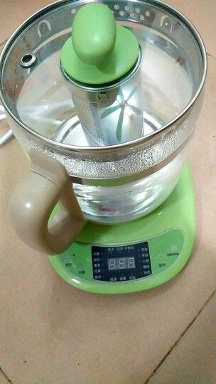 小熊(Bear)养生壶1.5L迷你玻璃烧水壶电水壶热水壶电热水壶 多功能花茶壶黑茶煮茶器煮茶壶YSH-B18T1 晒单图