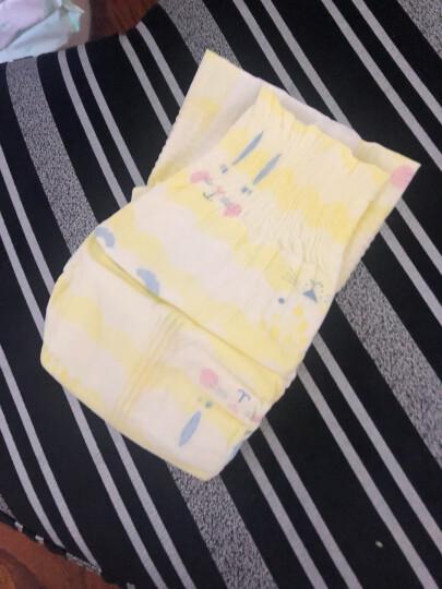 五羊FIVERAM柔柔芯纸尿裤XL105片(新旧随机发货) 晒单图