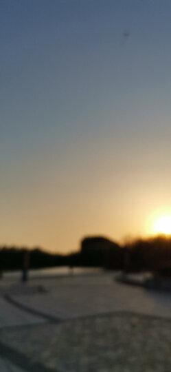福特(FORD) 原厂机油滤清器/机滤/机油格 新福克斯12-今1.6L/福睿斯/翼搏1.5L/新嘉年华13-今1.5L 适用 晒单图