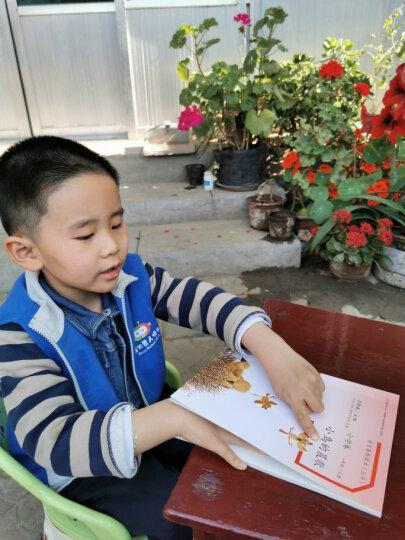 穿浅蓝格子衬衫的太阳 一年级下 人教版语文素养读本 温儒敏编 北大语文教育研究所 小学2 晒单图