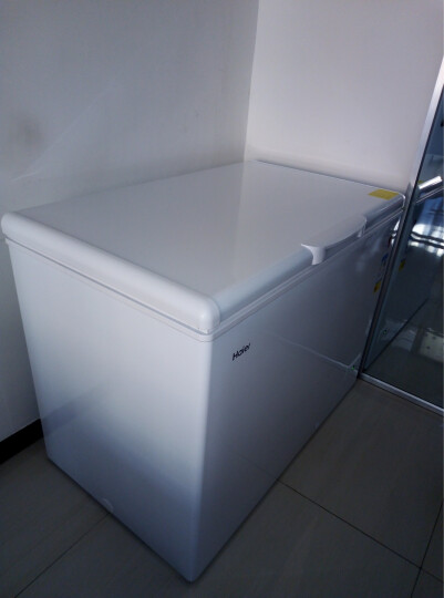 海尔(Haier) 318升商用卧式大冷冻冰柜 冷藏冷冻转换冷柜 BC/BD-318HD 晒单图