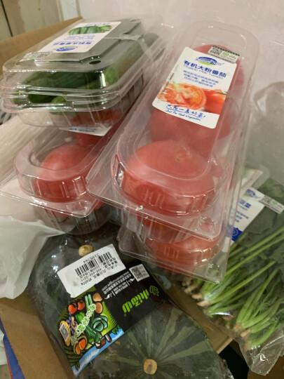 白玉 盒装鲜豆腐300g (3件起售) 晒单图