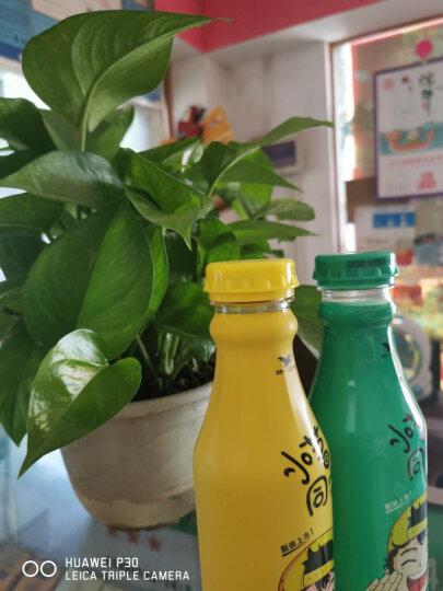统一 小茗同学 冷泡茶 冰橘绿茶 480ml*15瓶 整箱(新老包装随机发货) 晒单图