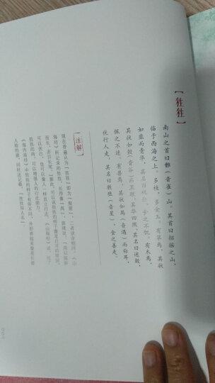 写给大家的西方美术史 【荐书联盟推荐】 晒单图
