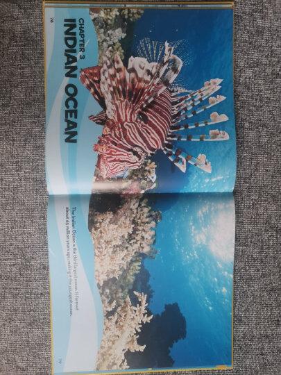 美国国家地理儿童百科 海洋 National Geographic Little Kids First Big Book of the Ocean 进口原版 少年儿童科普 大开本 晒单图