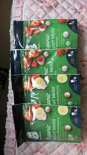 嘉宝Gerber Baby有机28 溶豆宝宝零食 婴幼儿辅食 有机草莓红莓味 三段(8个月以上)28g/袋 美国进口 晒单图