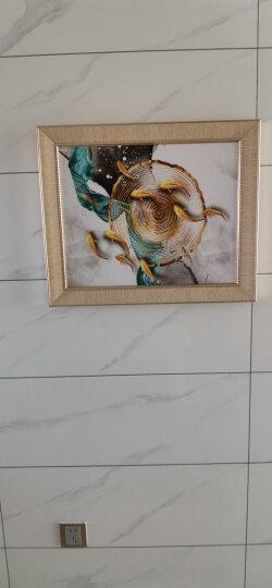 瑞尚(RUISHANG) 现代简约电表箱装饰画配电箱遮挡画餐厅客厅玄关挂画电闸箱多媒体盒墙画壁画 福禄相随 60*50 可覆盖(横50竖40) 晒单图