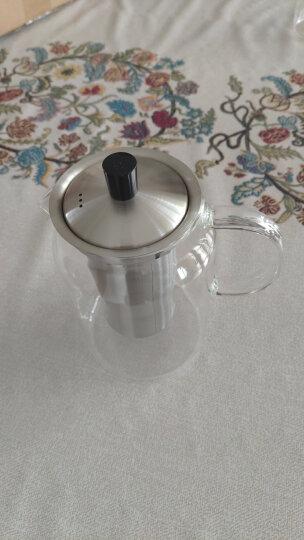 尚明(samaDOYO)耐热玻璃茶壶泡茶壶不锈钢过滤家用大容量泡茶器加厚茶具套装 1200ml配茶盘(送2杯) 晒单图