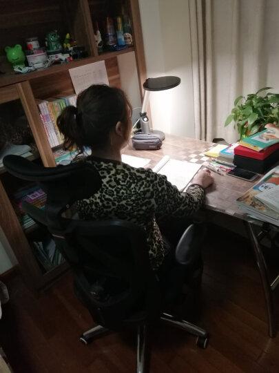 西昊(SIHOO) 人体工学电脑椅子 家用老板椅电竞椅 靠背转椅座椅 撑腰办公椅可躺 M18黑色 晒单图