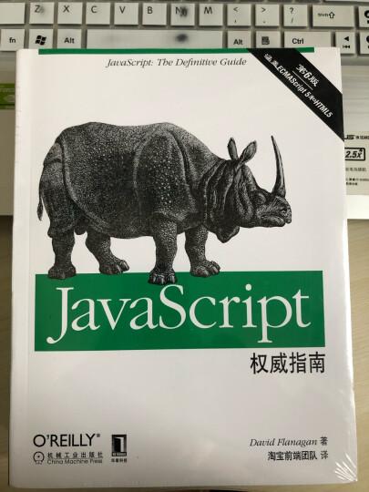 JavaScript高级程序设计(第3版)(图灵出品) 晒单图