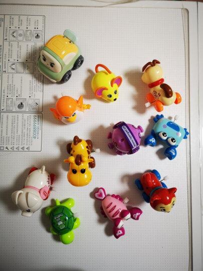 爱奇天使 儿童玩具男女小孩婴幼儿宝宝玩具上发条小动物早教启蒙益智玩具1-3-6岁礼物 嘟嘟小章鱼(颜色随机一个) 晒单图