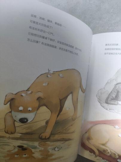 你好!数学 最亲切的数学概念启蒙图画书精编版(第2阶段 套装共10册) 晒单图