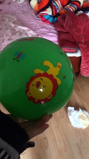 费雪(Fisher Price) 儿童玩具球 宝宝小皮球拍拍球22cm(绿色 赠送打气筒)F0516H2儿童礼物 晒单图