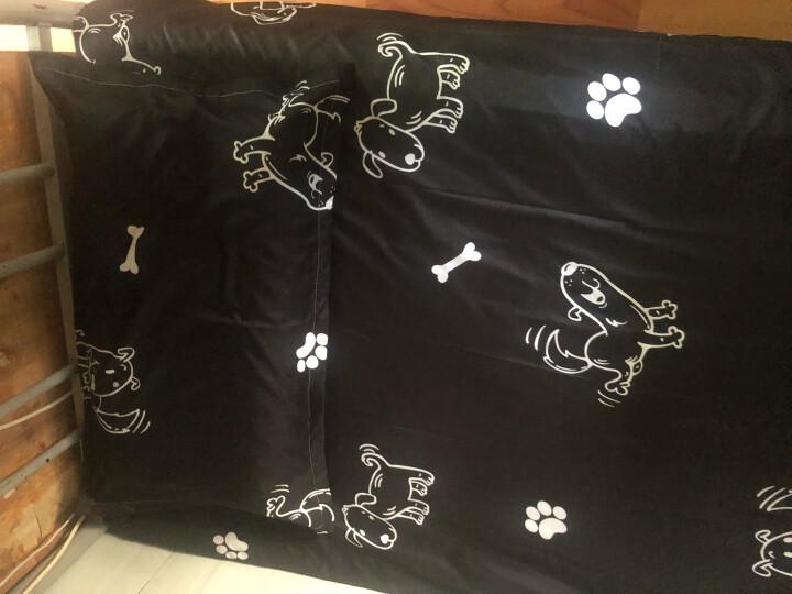 洛贝奇家纺 床上四件套 春夏卡通简约单人三件套1.8m双人被套学生床上用品1.5床单套件 小熊猫KSN 1.5m床四件套(被套150*200cm) 晒单图