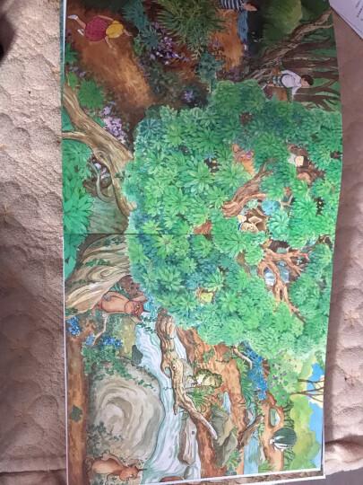 妖怪山 让孩子学会团结的冒险故事绘本 3-6岁 蒲蒲兰绘本 彭懿 晒单图