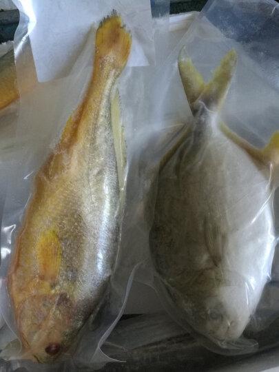 丰度 青岛活冻金鲳鱼1000g 两条 袋装 平鱼海鲜 晒单图