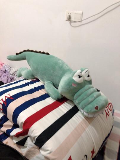 ins搞怪可爱巨无霸鳄鱼恐龙毛绒玩具公仔抖音同款女孩睡觉抱枕玩偶大号布娃娃生日礼物 女生 【深绿色-发呆】鳄鱼 1米 晒单图