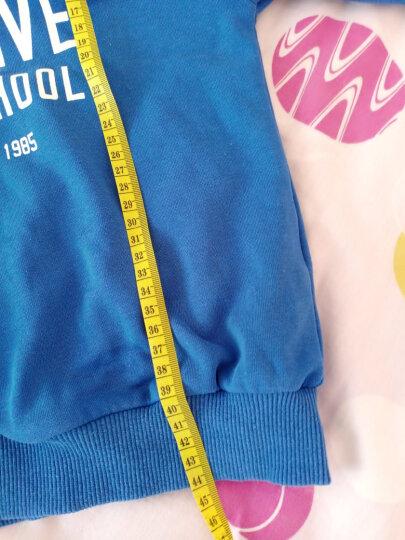 海润阳光 宝宝量身高尺挂图:识车(附送标准对数测视力表)婴幼儿童玩具男孩女孩玩具 晒单图