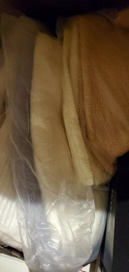 金号毛巾家纺 新疆棉A类纯棉毛巾洗脸毛巾强吸水面巾 两条装  兰/紫  95g/条 70*33cm 晒单图