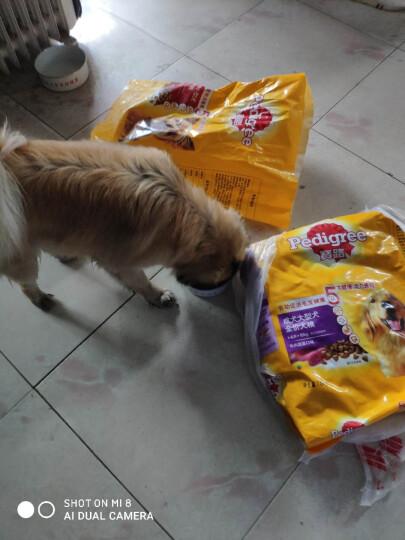 宝路 宠物狗粮 成犬全价粮 大型犬金毛哈士奇拉布拉多萨摩耶 牛肉味 1.8kg 晒单图