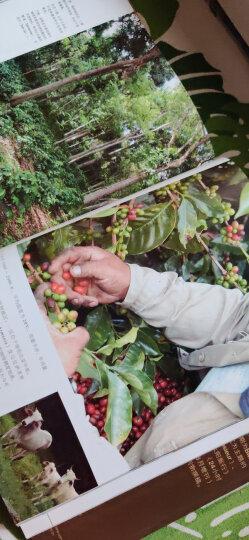 唤醒世界的香味:一趟深入咖啡地理、历史与文化的品味之旅 晒单图
