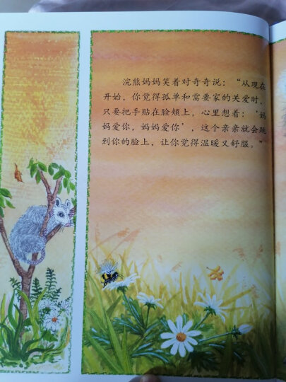 信谊绘本世界精选图画书:魔法亲亲 晒单图