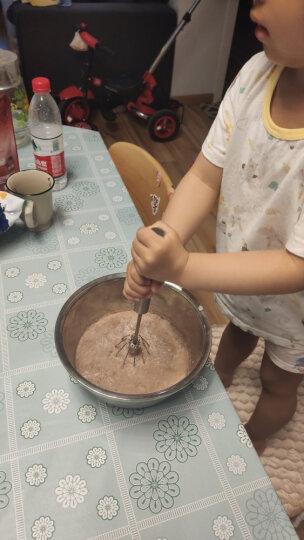 展艺冰淇淋粉  手工自制家用软硬雪糕粉 冰棒圣代冰棍原料甜筒材料 香草味 100g 晒单图