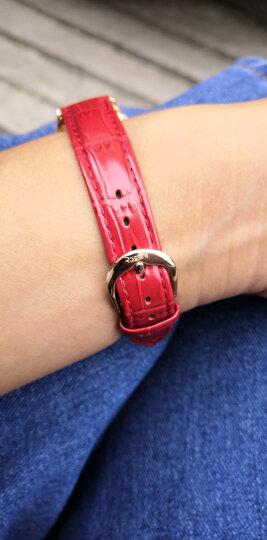 罗西尼(ROSSINI) 手表 CHIC系列时尚石英女表日历白盘红色皮带516734G01C 晒单图