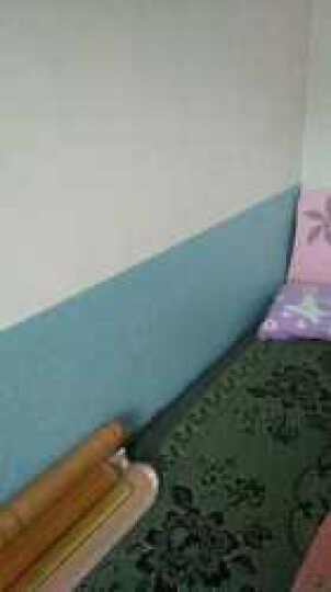 斯图 加厚防水PVC墙纸壁纸自粘卧室客厅宿舍寝室背景纸贴壁纸贴画3D彩装膜 9956-4蓝底小花 60厘米/3米价 晒单图