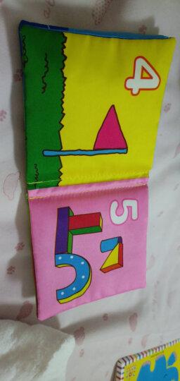 LALABABY/拉拉布书 儿童玩具布球 男孩女孩玩具 内置摇铃铃铛 0-3岁婴儿手抓球 六面球 晒单图