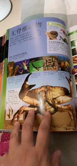 DK儿童人体百科全书(2018年全新修订版) 晒单图