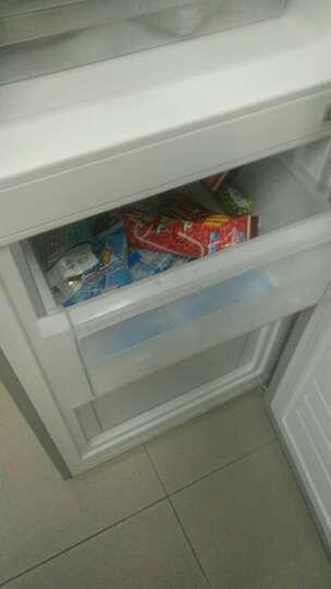 格力(KINGHOME)晶弘188升大冷藏空间两门冰箱 冰箱小型 节能静音 格力晶弘 BCD-188CL (太空银) 晒单图