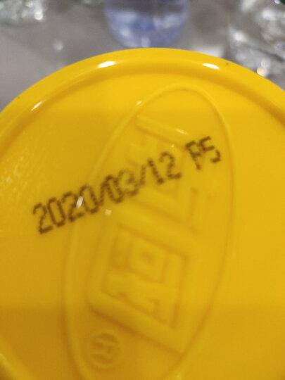 海南特产 南国 黄灯笼辣椒酱拌饭面剁椒酱 香辣味500g/瓶 晒单图