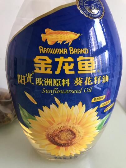 金龙鱼 食用油 原料欧洲进口 物理压榨 自然葵香 阳光葵花籽油5L(新老包装随机发货) 晒单图