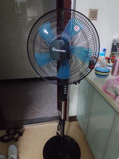 赛亿(Shinee)风扇落地扇 家用办公室台立式静音摇头非遥控五风叶电风扇FS40-7 晒单图