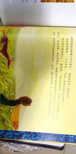 小王子(纯美珍藏绘本) 晒单图