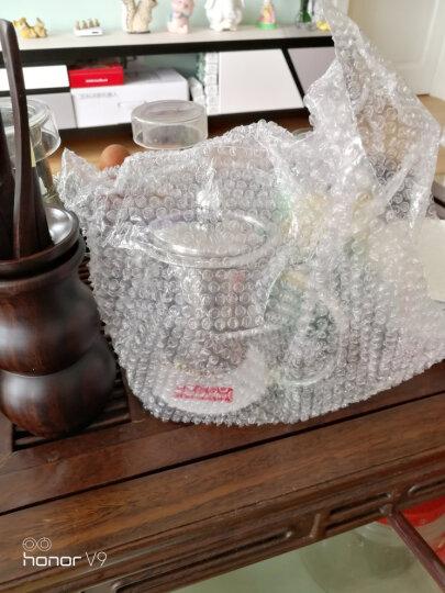 金灶(KAMJOVE)茶壶飘逸杯 功夫茶杯 茶水分离泡茶杯玻璃泡茶壶办公室茶具家用过滤花茶杯 A-01【350ml】 晒单图