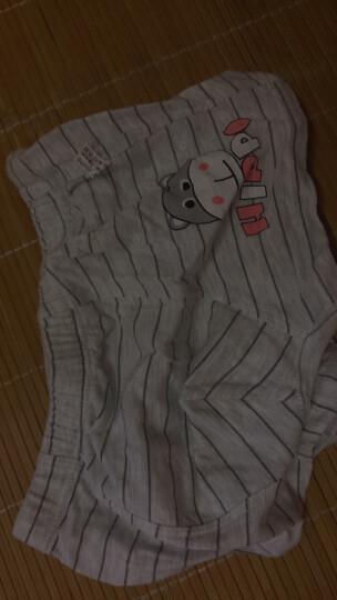 南极人儿童四季款平角内裤男童女童棉短裤宝宝棉内裤4条装 女3条-萌萌小熊 150cm(建议拍大一码) 晒单图