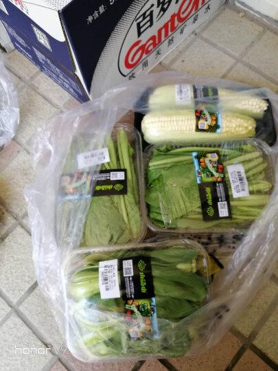 小汤山 新土豆 420g 基地直供新鲜蔬菜 晒单图